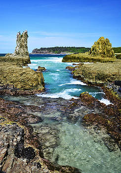 Cathedral Rocks by Terry Everson