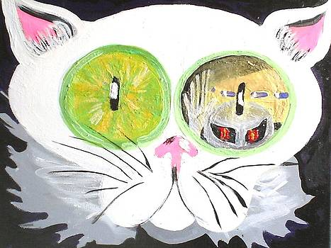 Cats Eye  by Ann Teicher