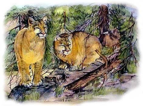 Cats by Jonni Hill