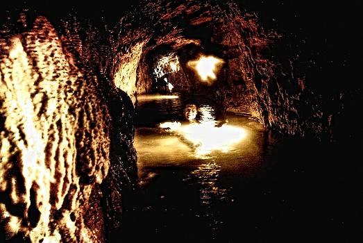 Cave Mann by Don Mann