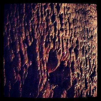 Cave Textures Iii by Paula Manning-Lewis