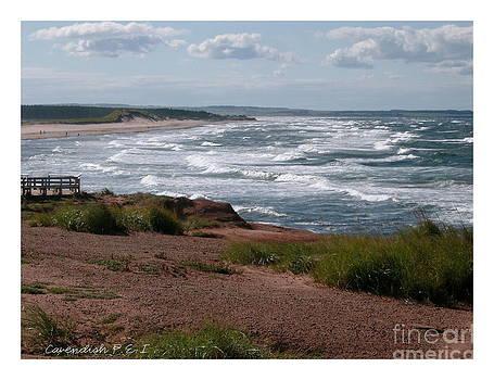 Cavendish Prince Edward Island Seascape by Joyce Gebauer