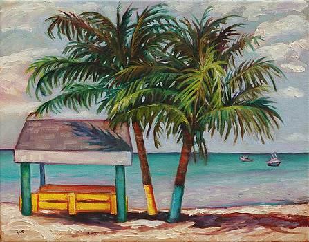 Cayman Canopy by Eve  Wheeler