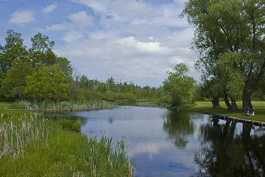 Cedar River by Megan Noble