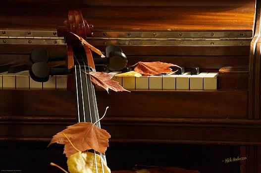 Mick Anderson - Cello Autumn 2