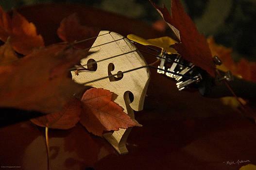 Mick Anderson - Cello Autumn 3