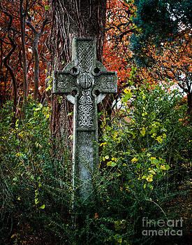Sonja Quintero - Celtic Cross in Foliage