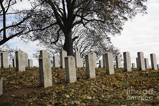 Chuck Kuhn - Cemetery VII