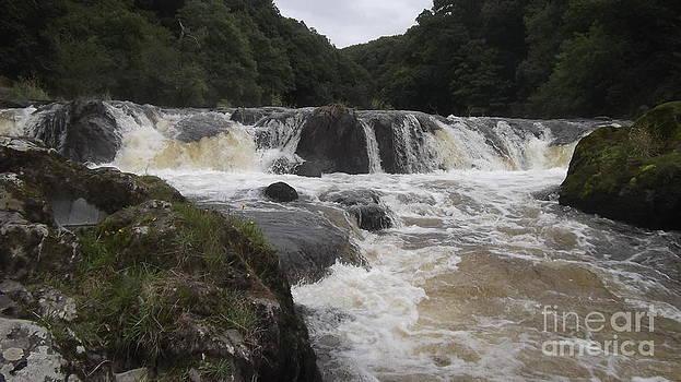 Cenarth Falls 3 by John Williams