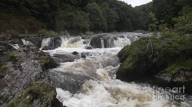 Cenarth Falls 6 by John Williams