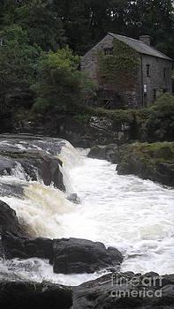 Cenarth Falls 7 by John Williams