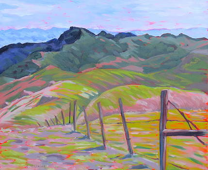 Central Coast Canyon by Katherine Moldauer