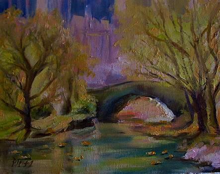 Central Park in Spring by Patricia Elliott Seitz