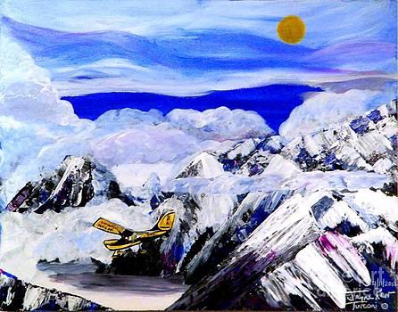 Cessna Rescue Flight by Jayne Kerr