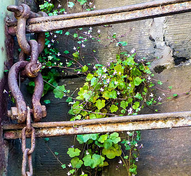 Chain and little flowers by Blago Simeonov