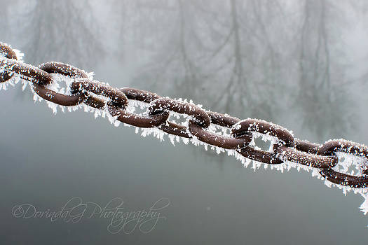 Chain of Winter by Dorinda Grever