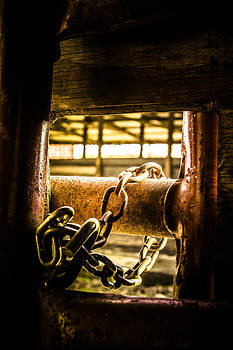 Chained light by Elizabeth Wilson