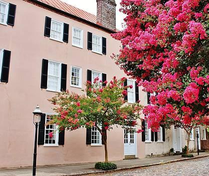Paulette Thomas - Charleston in Pink