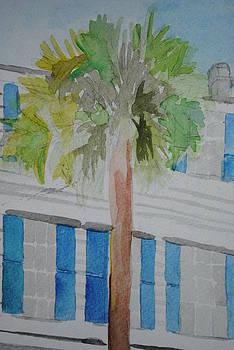 Charleston Palm by Kurt Schmitt