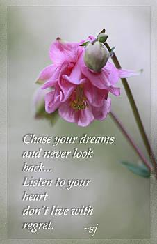 Shari Jardina - Chase your dreams..