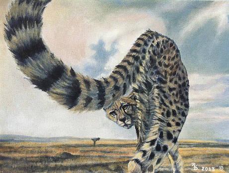 Cheetah by Rayna DeHoog