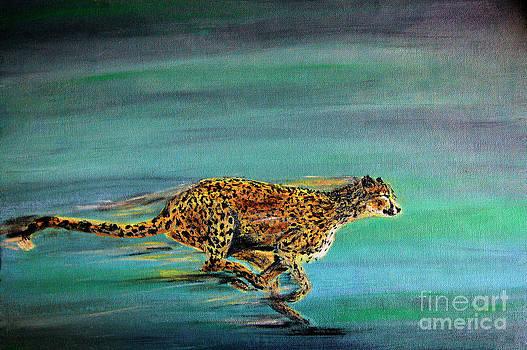 Nick Gustafson - Cheetah Run
