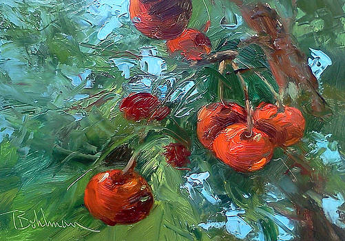 Cherries by Tina Bohlman