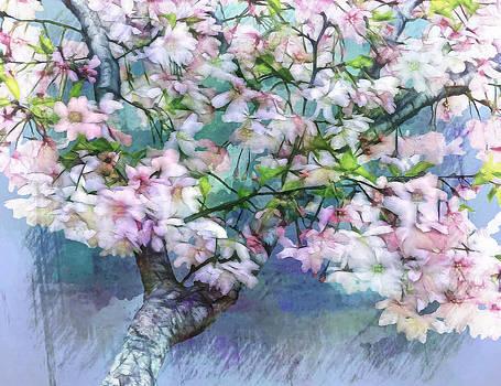 Nina Bradica - Cherry Blossom Tree