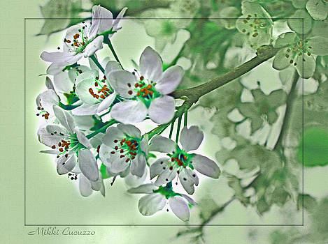 Cherry Blossoms in Green by Mikki Cucuzzo