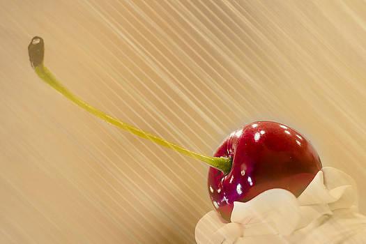 Cherry on Top by Elizabeth Wilson