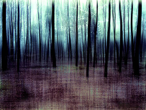 Chestiness by Florin Birjoveanu