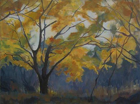 Chestnut Hill by Terri Messinger