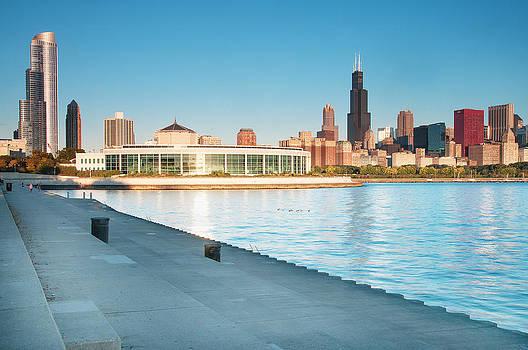 Chicago Shedd Aquarium by Tomasz Worek