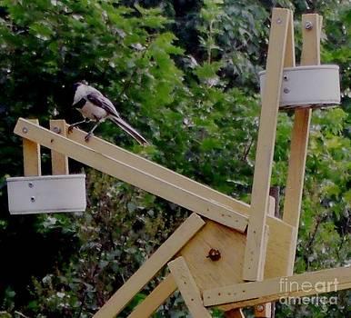 Gail Matthews - Chickadee checks out Ferris Wheel