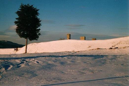Chimneys and Tree by David Fiske