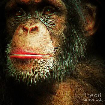 Wingsdomain Art and Photography - Chimp 20150210brun v3 square