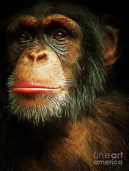Wingsdomain Art and Photography - Chimp 20150210brun v3