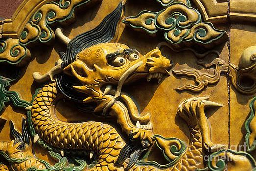 James Brunker - Chinese dragon portrait
