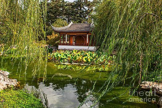 Jamie Pham - Chinese Garden Breeze