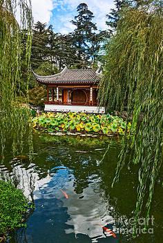 Jamie Pham - Chinese Garden Dream