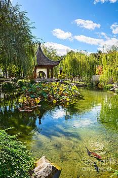 Jamie Pham - Chinese Garden Lake