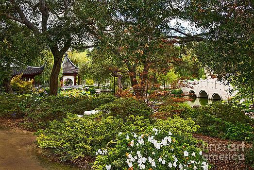 Jamie Pham - Chinese Garden View