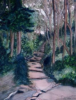 Chosen Path by Donna Whitsitt