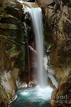 Adam Jewell - Christine Falls