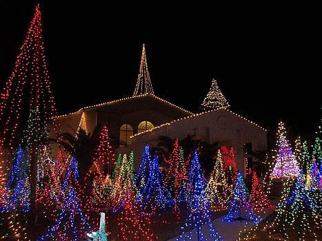 Christmas 02 by Bruce Kessler