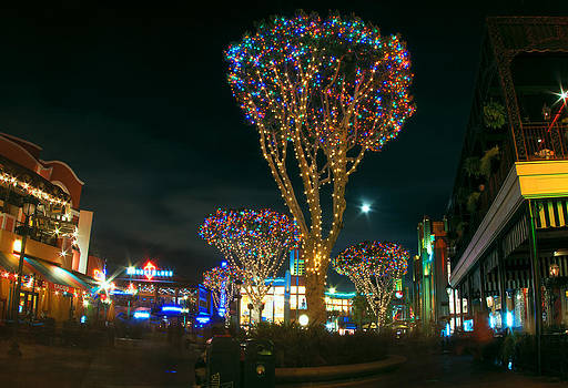 Christmas at Downtown Disney by Greg Amptman