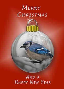 Michael Peychich - Christmas Card Blue Jay