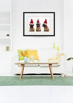 Edward Fielding - Christmas Caroling Pug