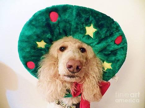 Judy Via-Wolff - Christmas Dog
