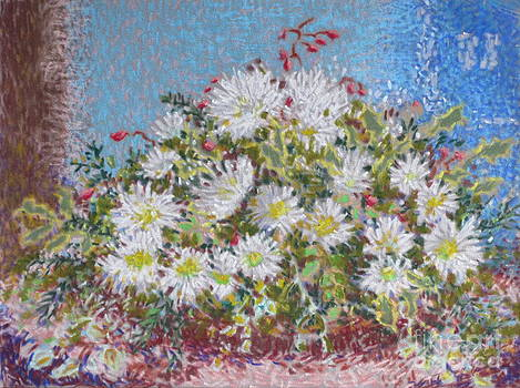 Christmas Flowers by Bernice Grundy